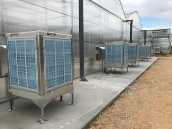 Evaporative air conditioning in melons and potatoes greenhouse - France